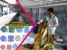Pemesanan Seragam Batik Sekolah dari Medan
